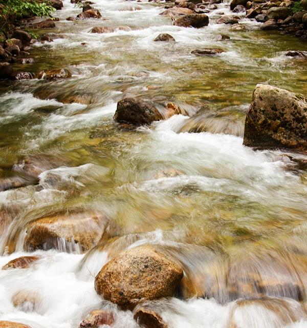 merced river | Desiree Prakash Studio