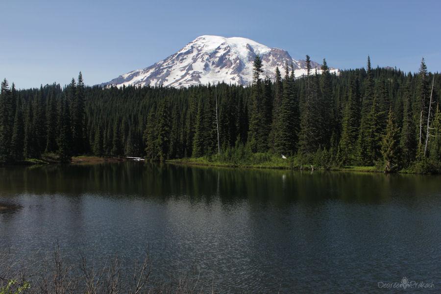 Mt Rainier | Desiree Prakash Studio