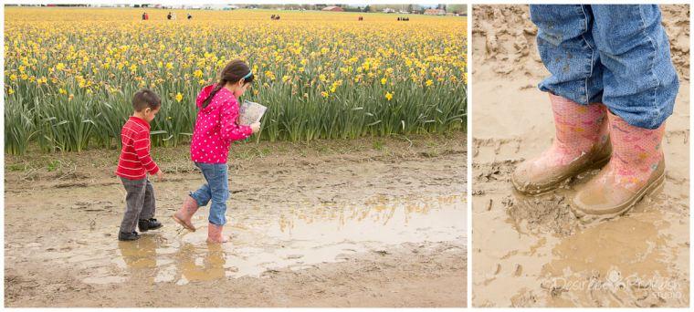 roozengaarde daffodil field | Desiree Prakash Studio